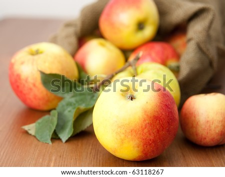 Ripe Red Apples on Burlap Bag from Farm