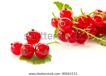 ripe red currant berries on a white background