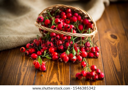 ripe red dogrose in a basket on a wooden Stock photo ©