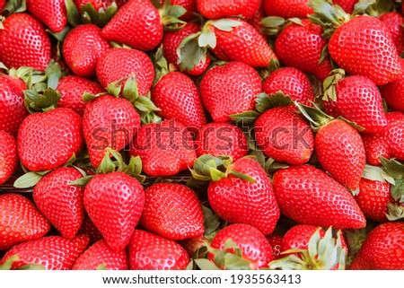 Ripe red strawberry. Strawberry background. Strawberry from the top.
