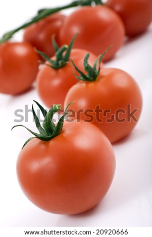 Ripe red tomatoes on the vine with white background