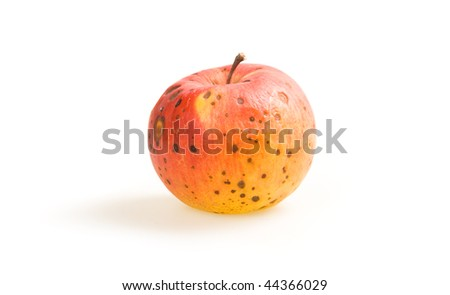 Ripe spoilage red apple isolated on white background