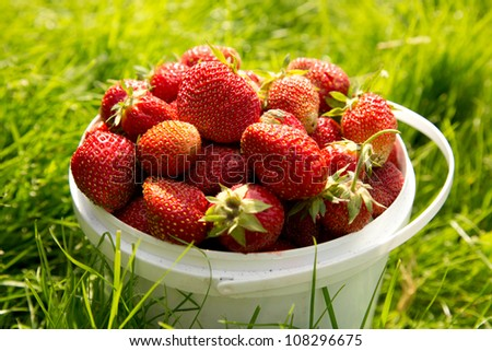 Ripe strawberry in basket on grass