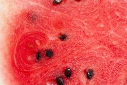 Ripe summer watermelon macro photography.