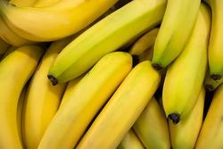 Ripe sweet bananas at the farmers market.