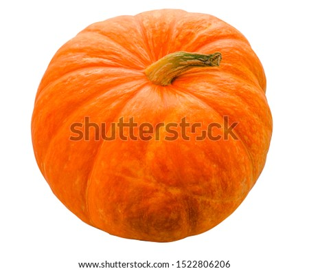 Ripe tasty ripe for a fun and cheerful holiday Halloween pumpkin on a white background