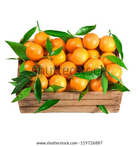 Ripe tasty tangerines with fresh leaves in wooden box isolated on white