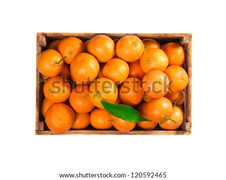 Ripe tasty tangerines with fresh leaves in wooden box isolated on white, top view