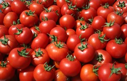 Ripe tomatoes at the market