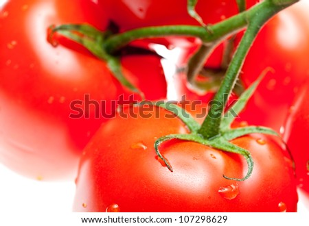 Ripe tomatoes with drops of water - macro shot - stock photo