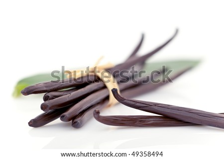 Ripe vanilla plants pods isolated on white background