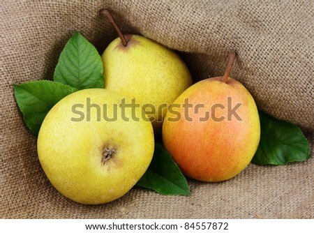 Ripe yellow pears in a bag