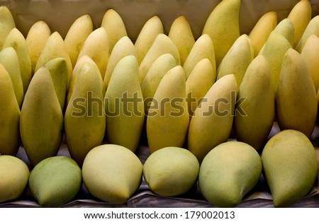 Ripen Mangoes lay as pattern.Six mangoes at front raw lay down.back raw more mangoes stand up.