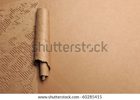 Ripped cardboard forming scroll with copyspace on right