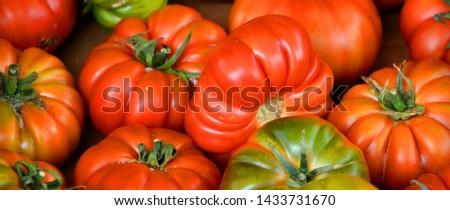 Ripple tomatoes Pantano Romanesco has the perfect balance between sweetness and citrussy tartness, a wonderful tomato.