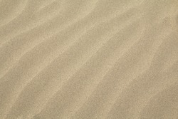 Rippled clean sand texture from an overhead perspective