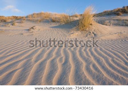 Rippled dune in front of a blue sky