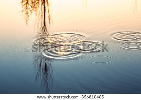 Ripples in the pond