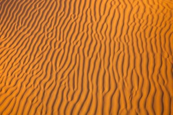 ripples in the soft sand