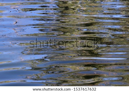 Ripples in this reflecting pond are colored with the reflections of trees and sky. #1537617632