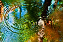 ripples in water with autumn colors