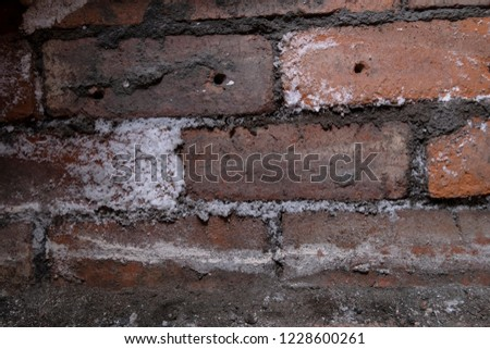 Rising damp on brick wall, salt crystals form as a result of salination