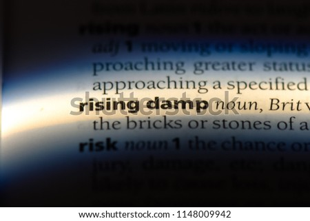 rising damp word in a dictionary. rising damp concept.