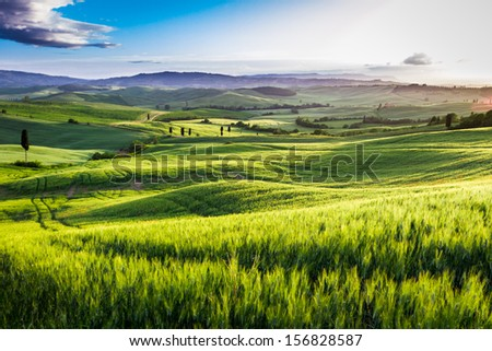 Rising fog in the valley at sunset, Tuscany