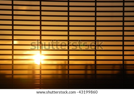 Rising sun behind window blinds
