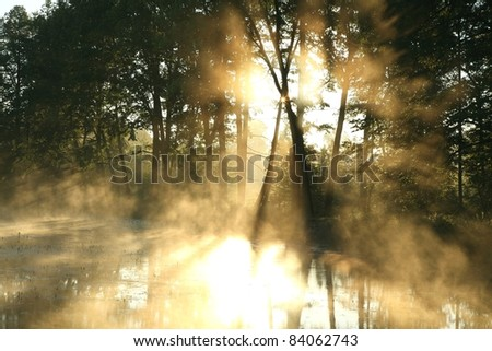 Rising sun enters the deciduous forest surrounded by mist floating over the pond. - stock photo