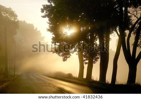 Rising sun shines among the trees at the edge of the road in a small town.