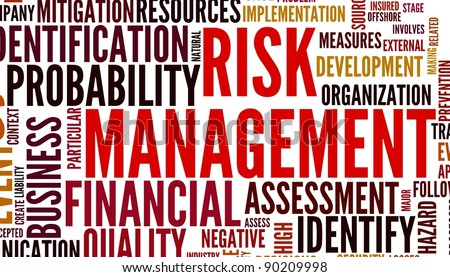 Risk management concept in tag cloud isolated on white background