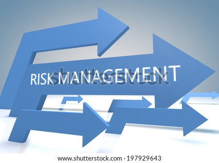 Risk Management and Insurance write eassy