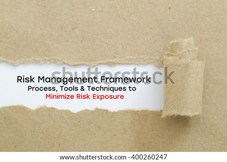 risk management cycle essay