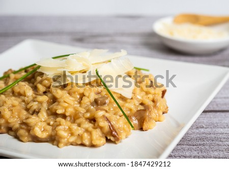 Risotto plate with strips of Parmesan cheese in the foreground with a light gray background and small bowl of Parmesan, decordao con hierbas