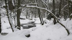 river aist in the austrian valley aisttal near pregarten in winter