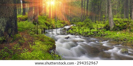 River at sunrise in the Carpathian forest - fast jet of water at slow shutter speeds give a beautiful fairy-tale effect. Ukraine is rich in water resources in the Carpathian Mountains is  good ecology #294352967
