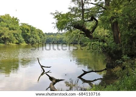 River bend flowing between gap in the trees