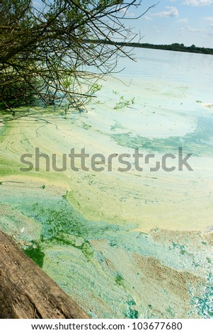 River contamination