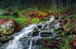 River creek waterfall flowing view. Forest waterfall rocks. Waterfall in forest. Forest waterfall view
