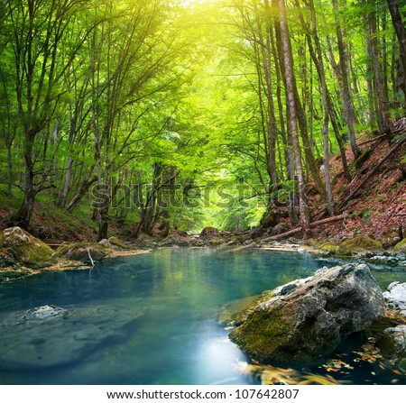 River deep in mountain forest. Nature composition. #107642807