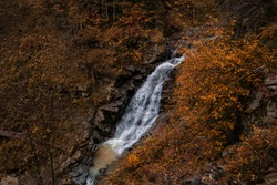 River deep in mountain forest. Nature composition. Mendelich River in the North Caucasus, Rosa Khutor, Russia, Sochi. beautiful cascading waterfall in the autumn forest, fog and rain.