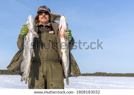 Photo of  River fish caught on winter fishing, in the hands of a fisherman pike.