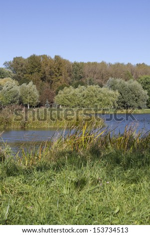 river flows through the autumn park.