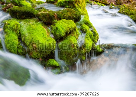 River flows through the moss and stones