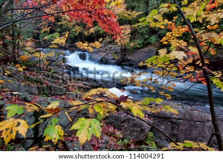 River framed by colorful autumn leaves of many different colors.