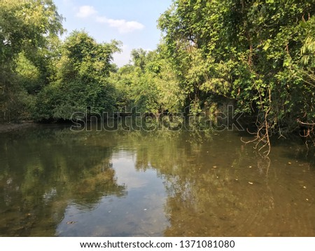 River Gir Forest