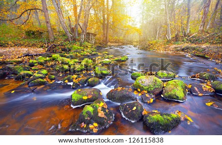 river in autumn forest - stock photo