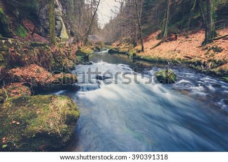 river in forest landscape...