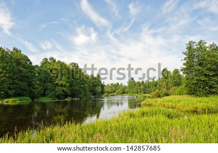 river in green banks covered with woods #142857685